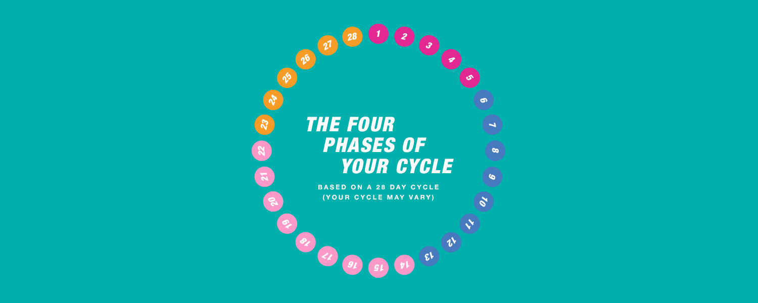 Four phases cycle