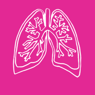 Illustration of lungs on a pink background - Libresse