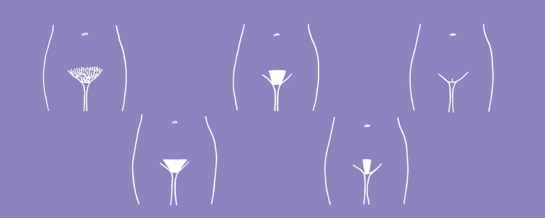 Разные линии бикини