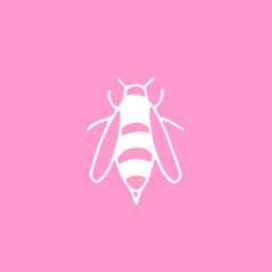 Illustration of an insect on a pink background - Libresse