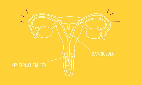 Je eerste menstruatie
